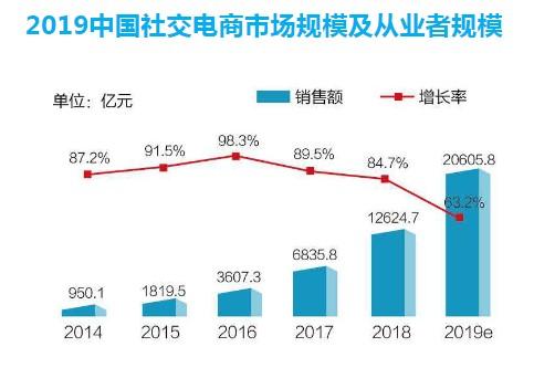 来源:《2019中国社交电商行业发展报告》